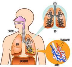 急性支气管炎注意事项