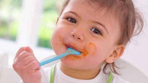 用虾怎么给宝宝做辅食食谱