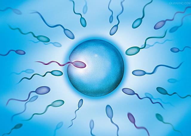 精子成活率低怎么办