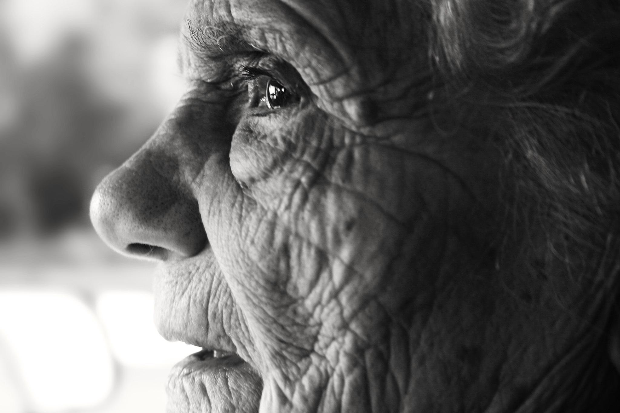 怎样才能有效预防老年痴呆