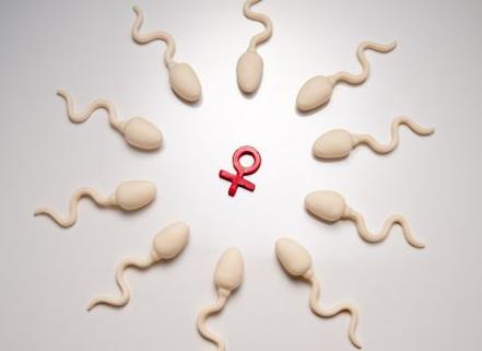 补精子最有效15种食物