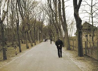 不适合老人散步的方式有哪些