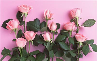 女性更年期综合症如何调理
