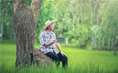 老年男人性能力如何修养?