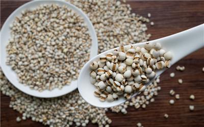 薏米粉怎么吃减肥