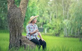老年人夏季养生保健需注意的问题
