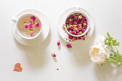 女人喝什么茶可以排毒养颜