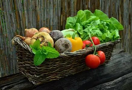 老年人立夏季节如何进行饮食保养