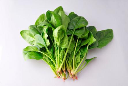孕妇可以吃菠菜吗