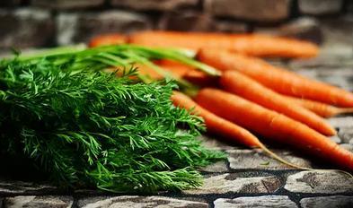 哪些蔬菜是补血的