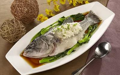 石斑鱼的营养价值石斑鱼的功效有哪些