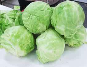 圆白菜的营养价值