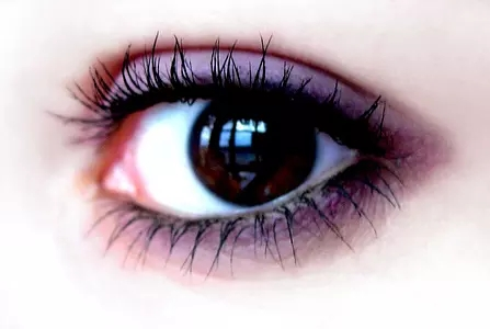 怎样去掉眼袋和黑眼圈