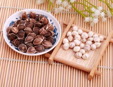 辣木籽功效与作用