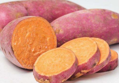 红薯减肥食谱大全 红薯粥 红薯泥