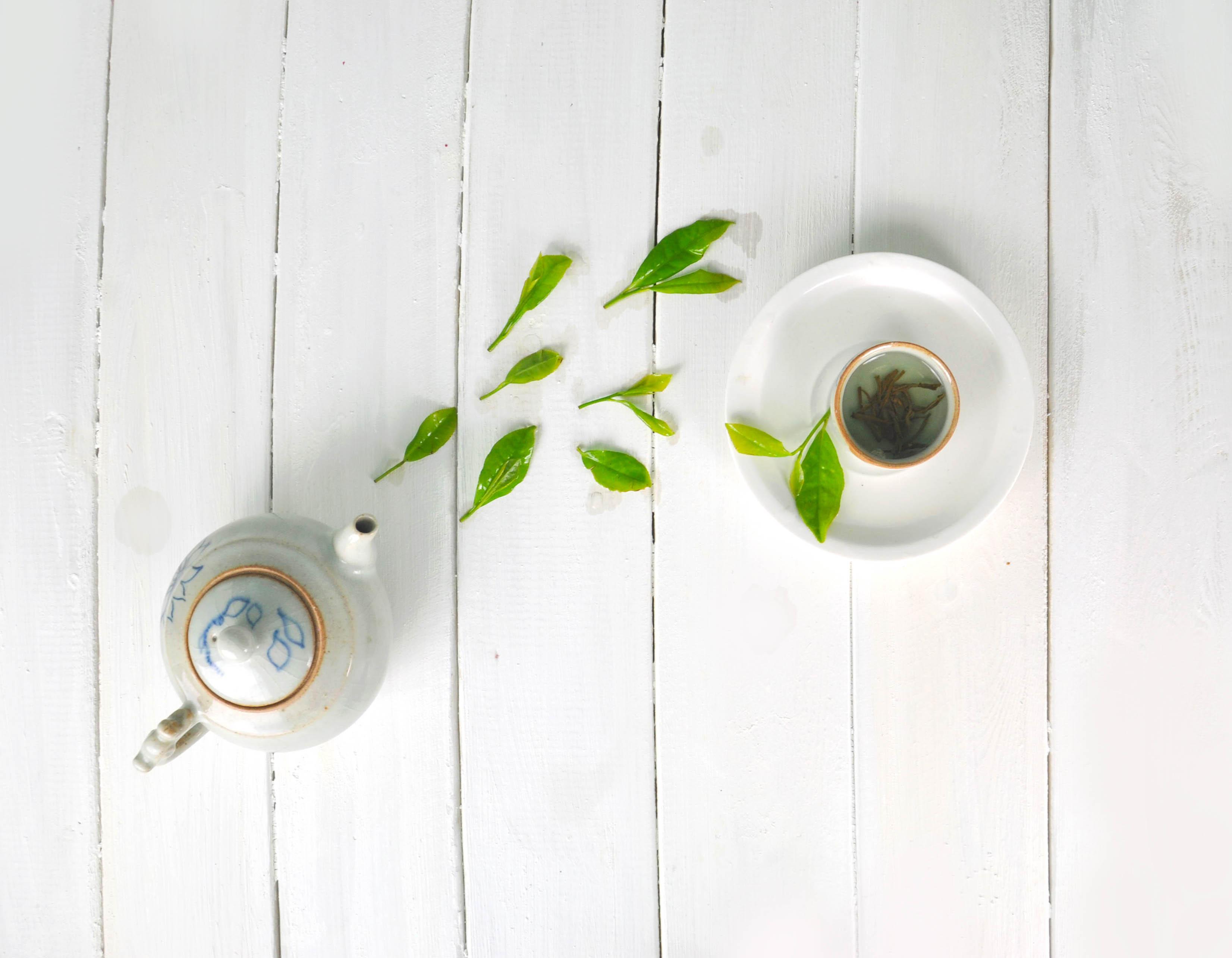 五子补肾茶的做法及功效