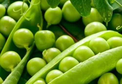 吃什么蔬菜对皮肤好 豌豆 白萝卜