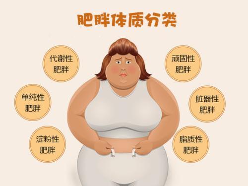 美体早知道:摆脱脂肪,塑造形体!