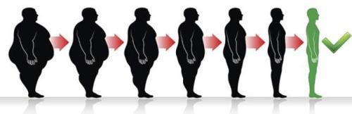 你知道常用降脂减肥中药有哪些吗?(一)