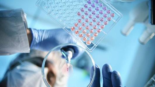 S蛋白电镜图首次公布,有助开发新冠疫苗