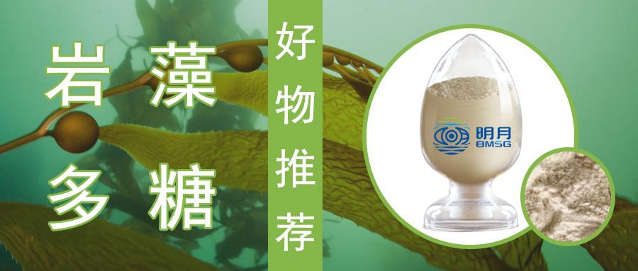 岩藻多糖——清除幽门螺杆菌新选择